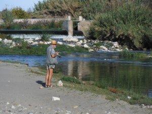 Norman spotting carp