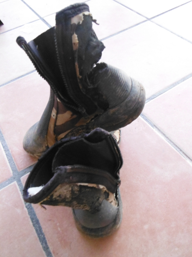 Here are my boots after the dogs got to work on them