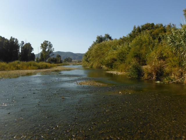 Río Guadalhorce