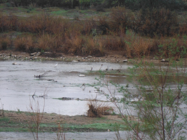 River flow on the Guadalhorce has been bolstered by recent rain.