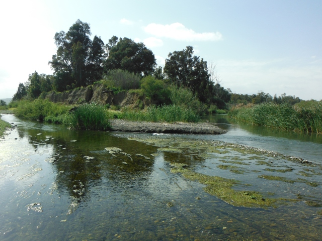 This is where the Río Grande (on the left) meets the Río Guadalhorce.